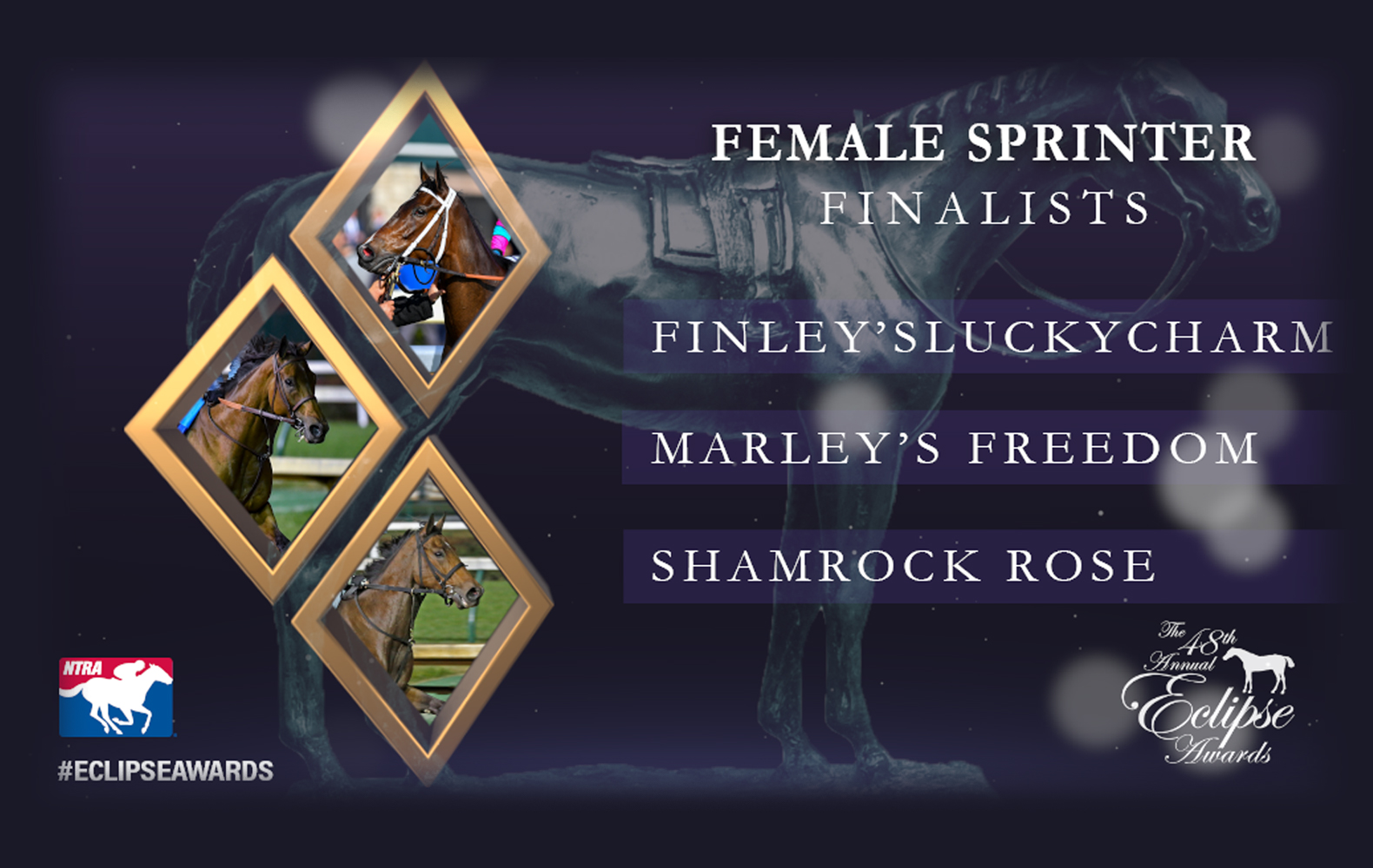 Shamrock-Rose-Eclipse-Finalist