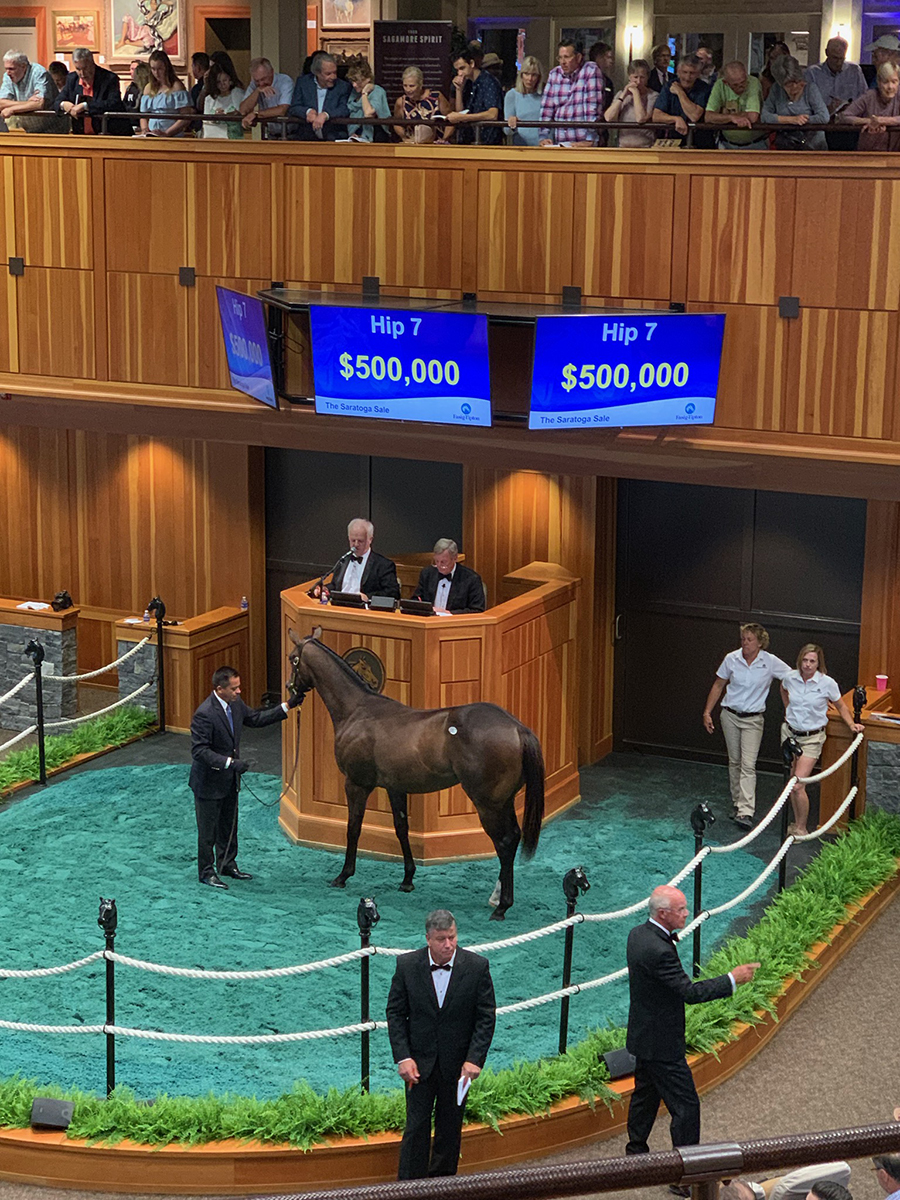 Flirting With Fate SOLD at Saratoga $500K